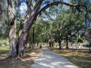 wide walkway leading to tree covered park