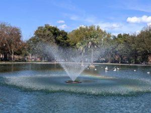 riverside duck pond